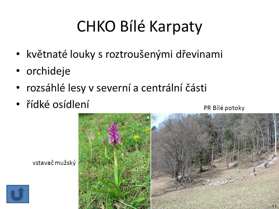 CHKO Bílé Karpaty květnaté louky s roztroušenými dřevinami orchideje rozsáhlé lesy v severní a centrální části řídké osídlení PR Bílé potoky 4. vstava