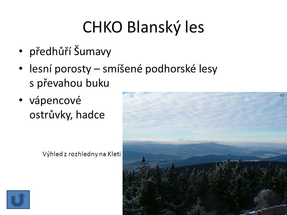 CHKO Blanský les předhůří Šumavy lesní porosty – smíšené podhorské lesy s převahou buku vápencové ostrůvky, hadce Výhled z rozhledny na Kleti 13.