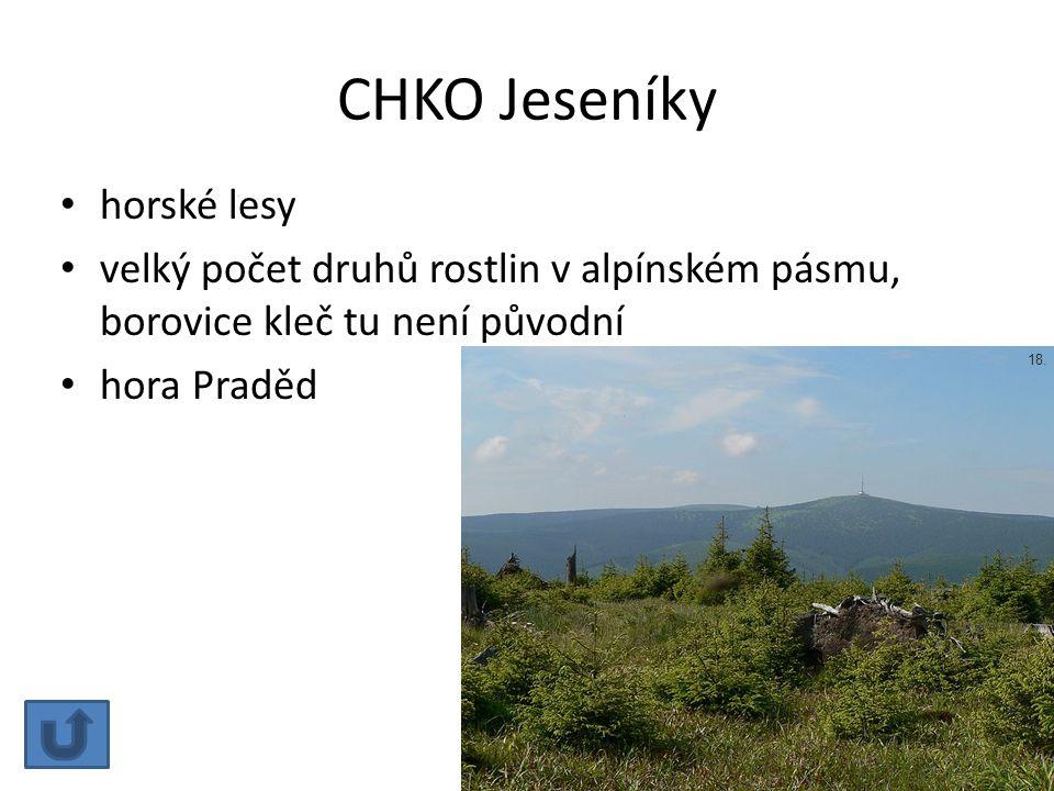 CHKO Jeseníky horské lesy velký počet druhů rostlin v alpínském pásmu, borovice kleč tu není původní hora Praděd 18.