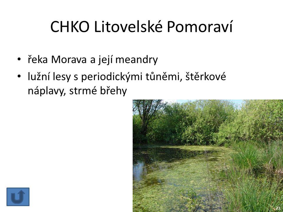 CHKO Litovelské Pomoraví řeka Morava a její meandry lužní lesy s periodickými tůněmi, štěrkové náplavy, strmé břehy 23.