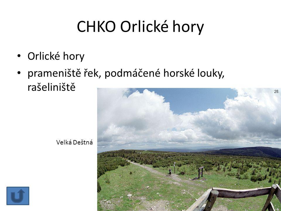 CHKO Orlické hory Orlické hory prameniště řek, podmáčené horské louky, rašeliniště Velká Deštná 28.