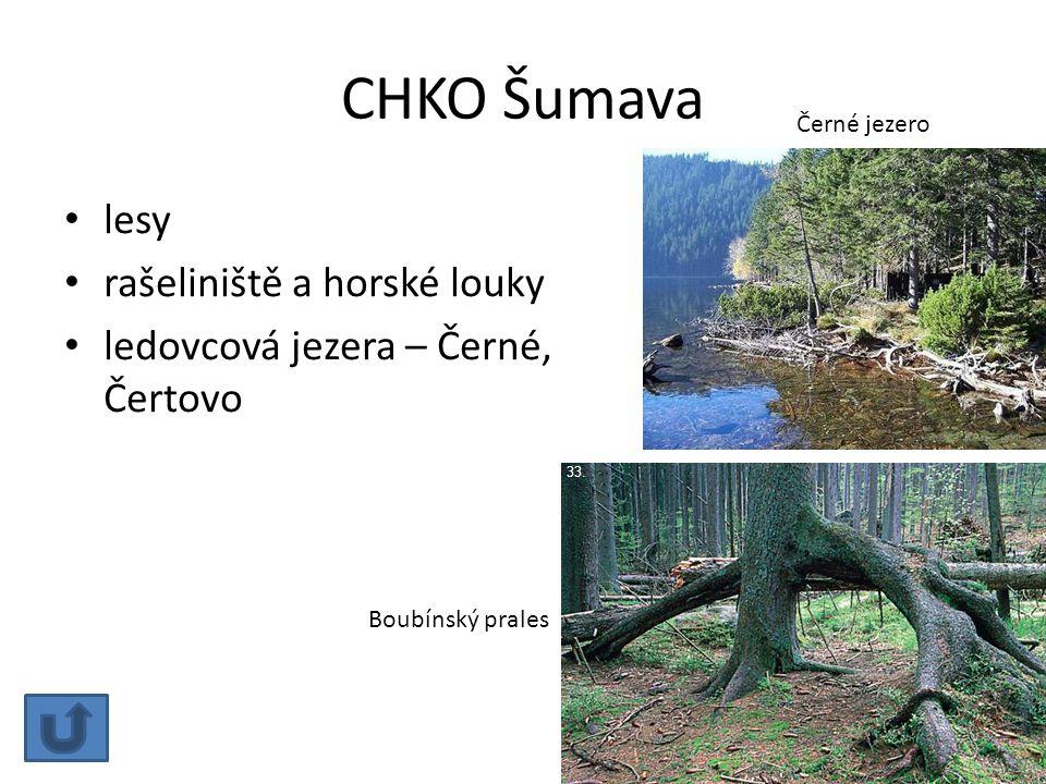 CHKO Šumava lesy rašeliniště a horské louky ledovcová jezera – Černé, Čertovo Černé jezero Boubínský prales 33.