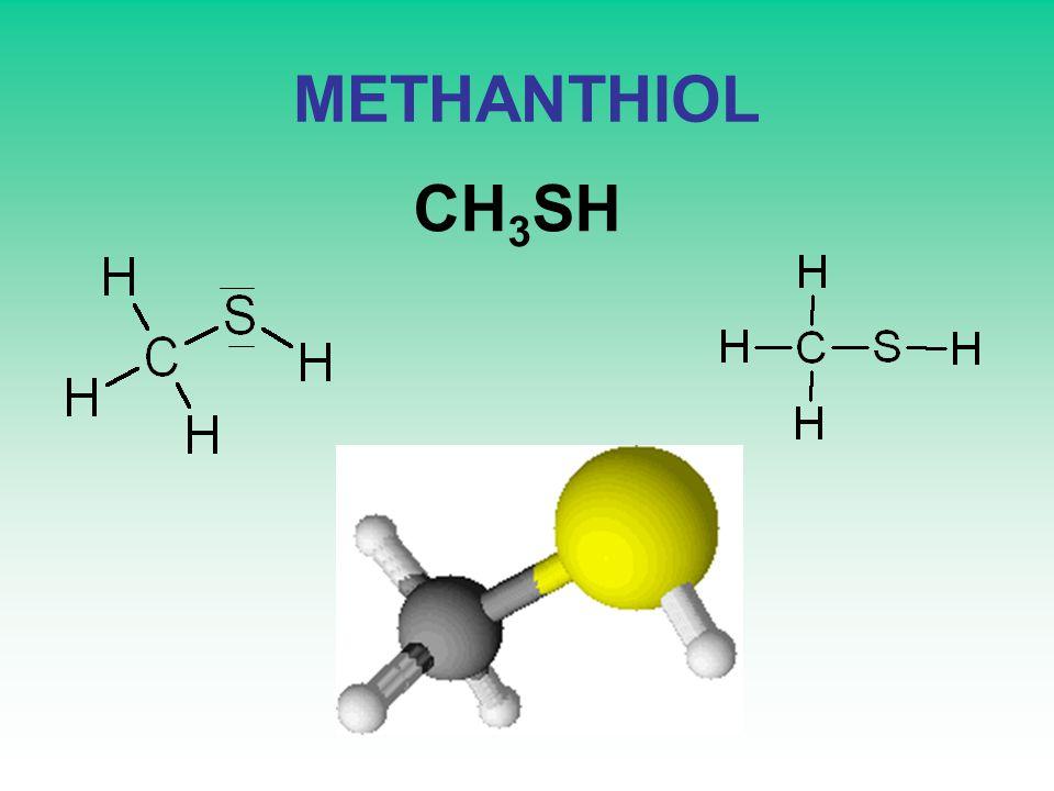 METHANTHIOL CH 3 SH