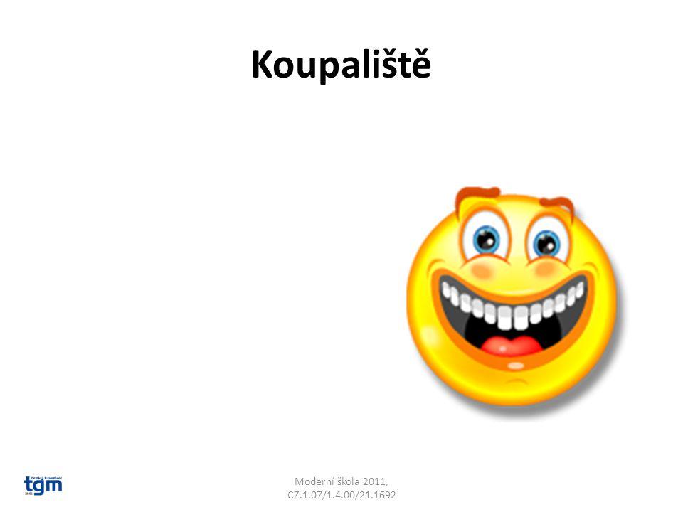 Koupaliště Moderní škola 2011, CZ.1.07/1.4.00/21.1692