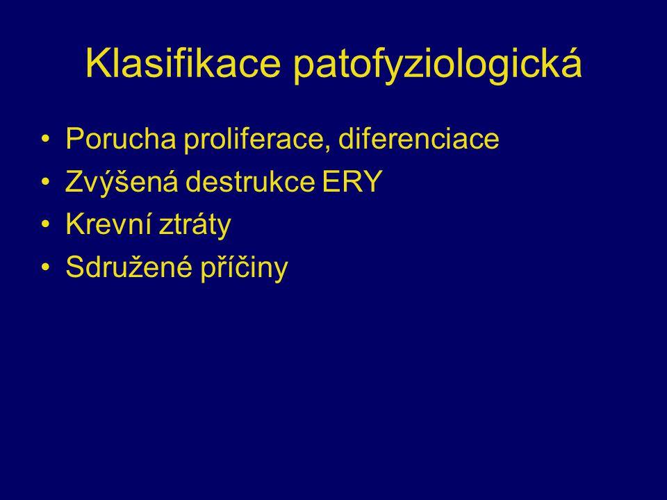 Klasifikace patofyziologická Porucha proliferace, diferenciace Zvýšená destrukce ERY Krevní ztráty Sdružené příčiny