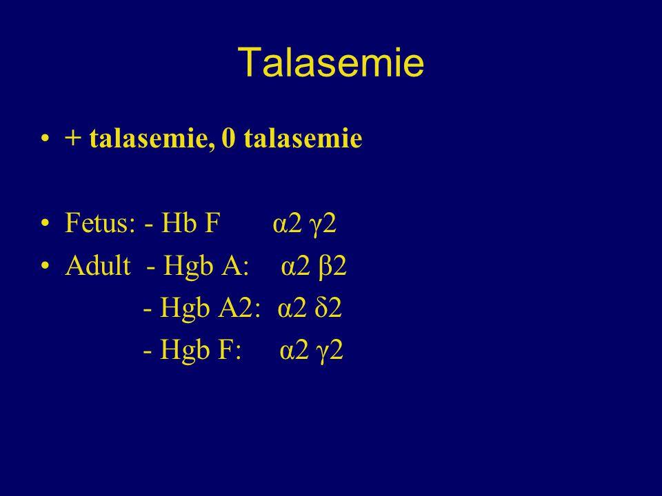 Talasemie + talasemie, 0 talasemie Fetus: - Hb F α2 γ2 Adult - Hgb A: α2 β2 - Hgb A2: α2 δ2 - Hgb F: α2 γ2