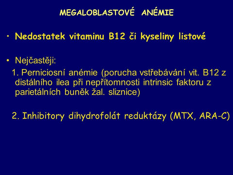 MEGALOBLASTOVÉ ANÉMIE Nedostatek vitaminu B12 či kyseliny listové Nejčastěji: 1. Perniciosní anémie (porucha vstřebávání vit. B12 z distálního ilea př