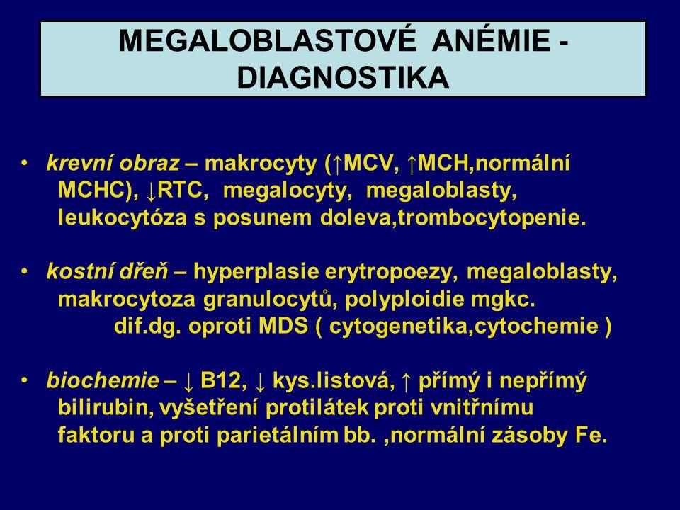 MEGALOBLASTOVÉ ANÉMIE - DIAGNOSTIKA krevní obraz – makrocyty (↑MCV, ↑MCH,normální MCHC), ↓RTC, megalocyty, megaloblasty, leukocytóza s posunem doleva,trombocytopenie.