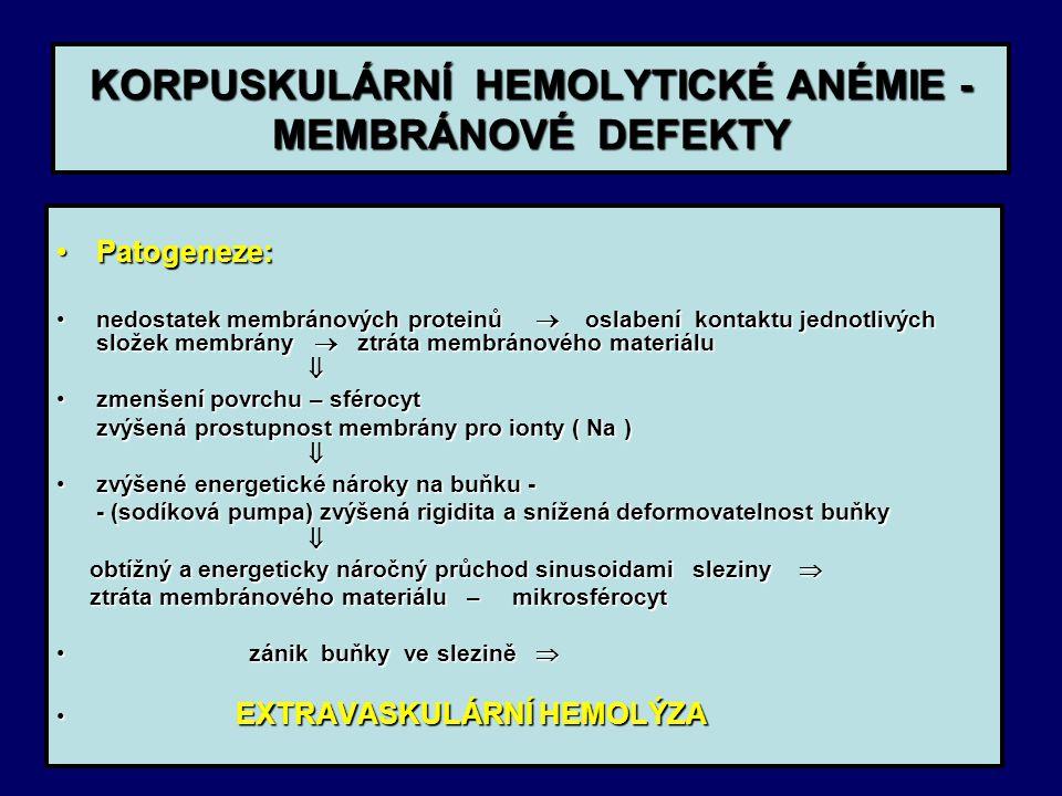 KORPUSKULÁRNÍ HEMOLYTICKÉ ANÉMIE - MEMBRÁNOVÉ DEFEKTY Patogeneze:Patogeneze: nedostatek membránových proteinů  oslabení kontaktu jednotlivých složek membrány  ztráta membránového materiálunedostatek membránových proteinů  oslabení kontaktu jednotlivých složek membrány  ztráta membránového materiálu  zmenšení povrchu – sférocytzmenšení povrchu – sférocyt zvýšená prostupnost membrány pro ionty ( Na ) zvýšená prostupnost membrány pro ionty ( Na )  zvýšené energetické nároky na buňku -zvýšené energetické nároky na buňku - - (sodíková pumpa) zvýšená rigidita a snížená deformovatelnost buňky - (sodíková pumpa) zvýšená rigidita a snížená deformovatelnost buňky  obtížný a energeticky náročný průchod sinusoidami sleziny  obtížný a energeticky náročný průchod sinusoidami sleziny  ztráta membránového materiálu – mikrosférocyt ztráta membránového materiálu – mikrosférocyt zánik buňky ve slezině  zánik buňky ve slezině  EXTRAVASKULÁRNÍ HEMOLÝZA EXTRAVASKULÁRNÍ HEMOLÝZA