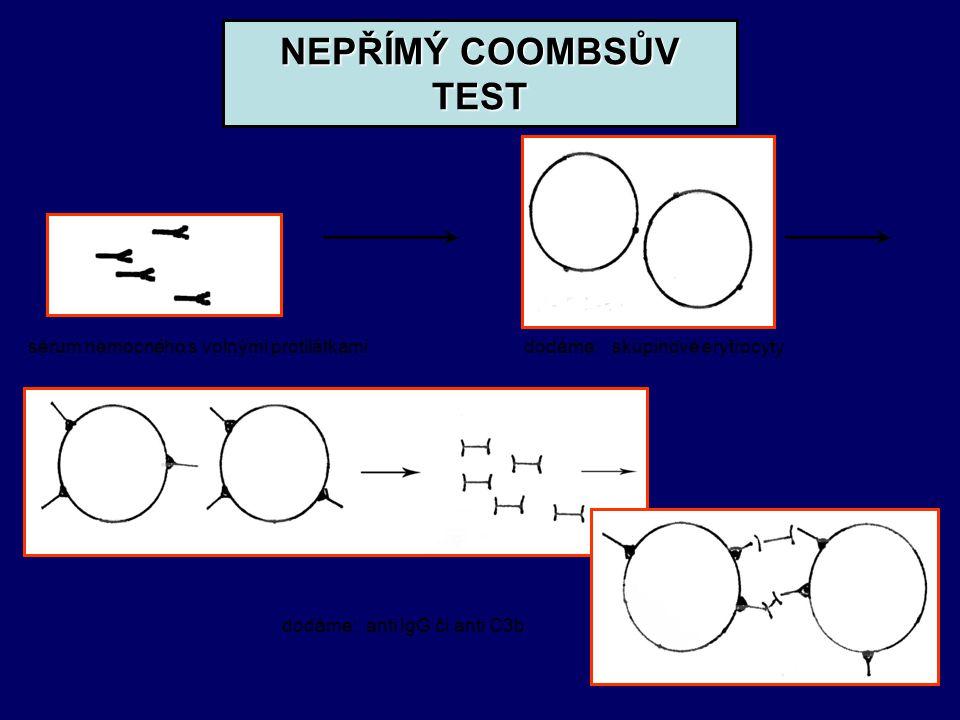 NEPŘÍMÝ COOMBSŮV TEST sérum nemocného s volnými protilátkami dodáme: skupinové erytrocyty dodáme: anti IgG či anti C3b