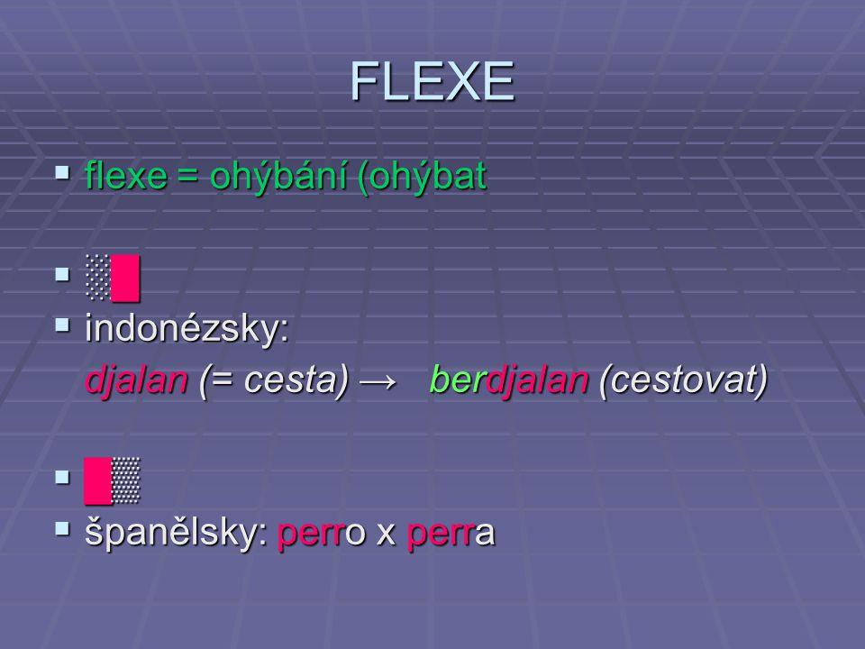 FLEXE  flexe = ohýbání (ohýbat  ░█  indonézsky: djalan (= cesta) → berdjalan (cestovat) djalan (= cesta) → berdjalan (cestovat)  █▒  španělsky: perro x perra