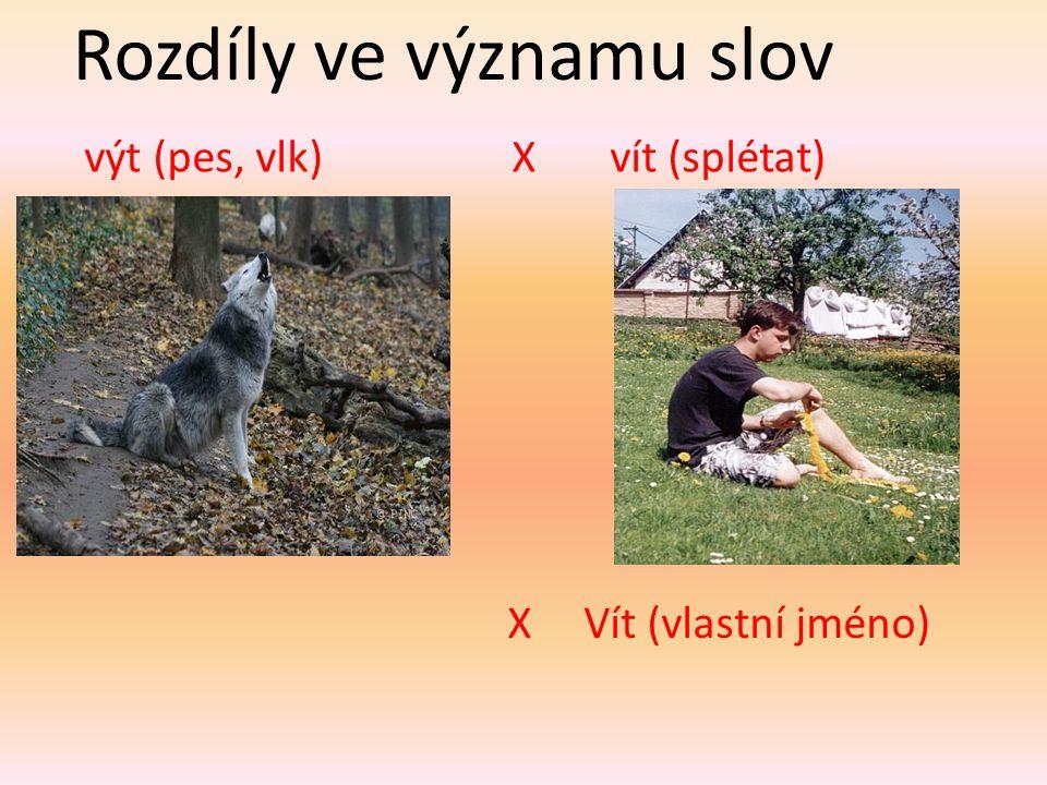 Rozdíly ve významu slov výt (pes, vlk) X vít (splétat) X Vít (vlastní jméno)