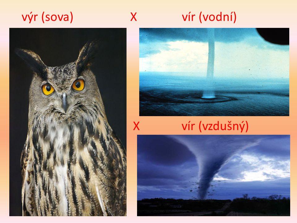 výr (sova) X vír (vodní) X vír (vzdušný)