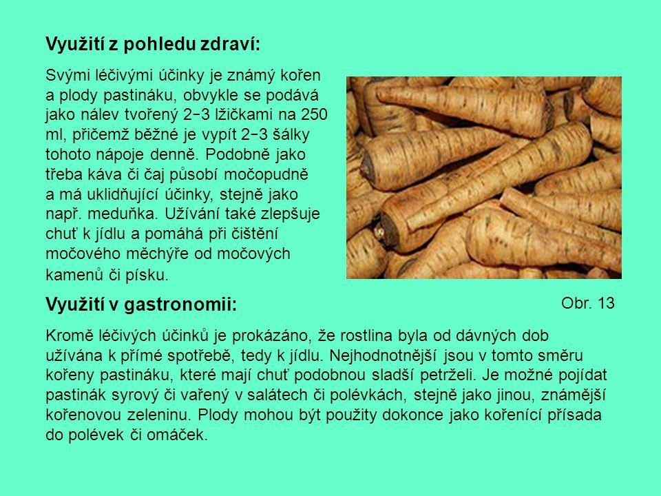 Využití z pohledu zdraví: Svými léčivými účinky je známý kořen a plody pastináku, obvykle se podává jako nálev tvořený 2 − 3 lžičkami na 250 ml, přiče