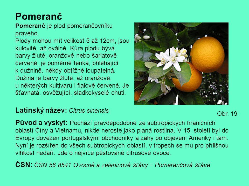 Pomeranč Pomeranč je plod pomerančovníku pravého. Plody mohou mít velikost 5 až 12cm, jsou kulovité, až oválné. Kůra plodu bývá barvy žluté, oranžové