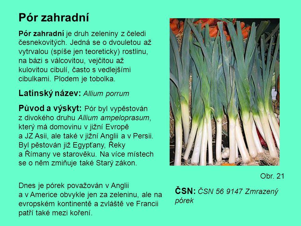 Pór zahradní Pór zahradní je druh zeleniny z čeledi česnekovitých. Jedná se o dvouletou až vytrvalou (spíše jen teoreticky) rostlinu, na bázi s válcov