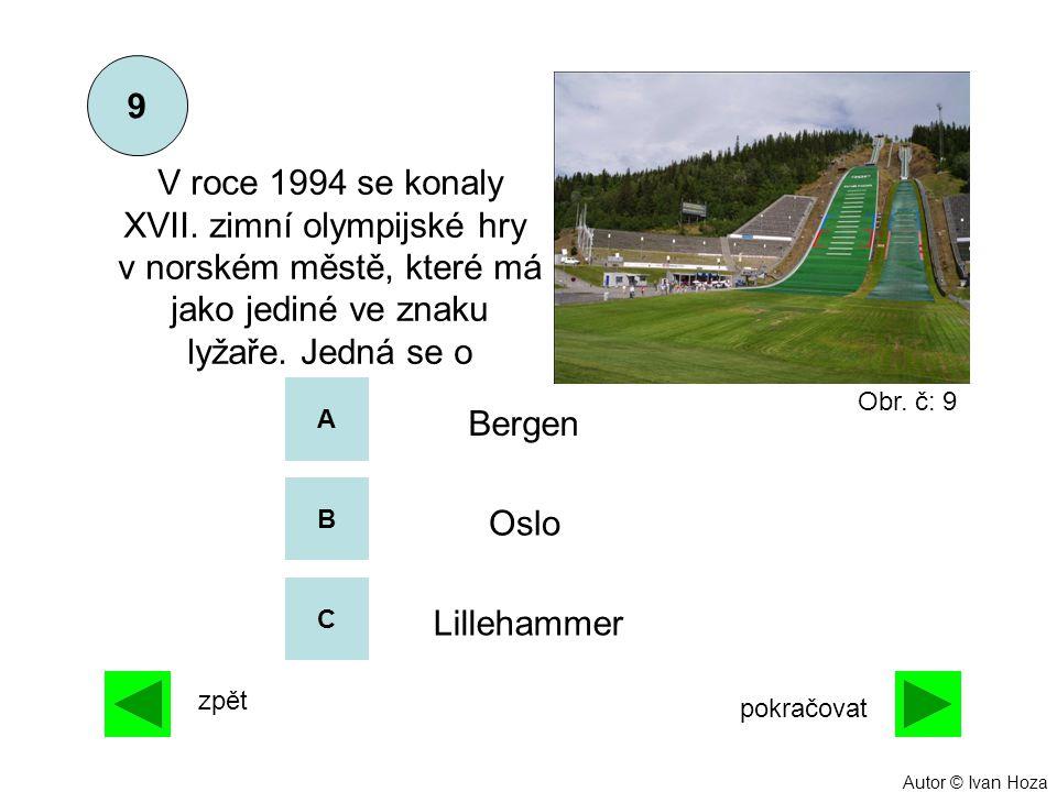 A B C 9 zpět pokračovat V roce 1994 se konaly XVII. zimní olympijské hry v norském městě, které má jako jediné ve znaku lyžaře. Jedná se o Lillehammer