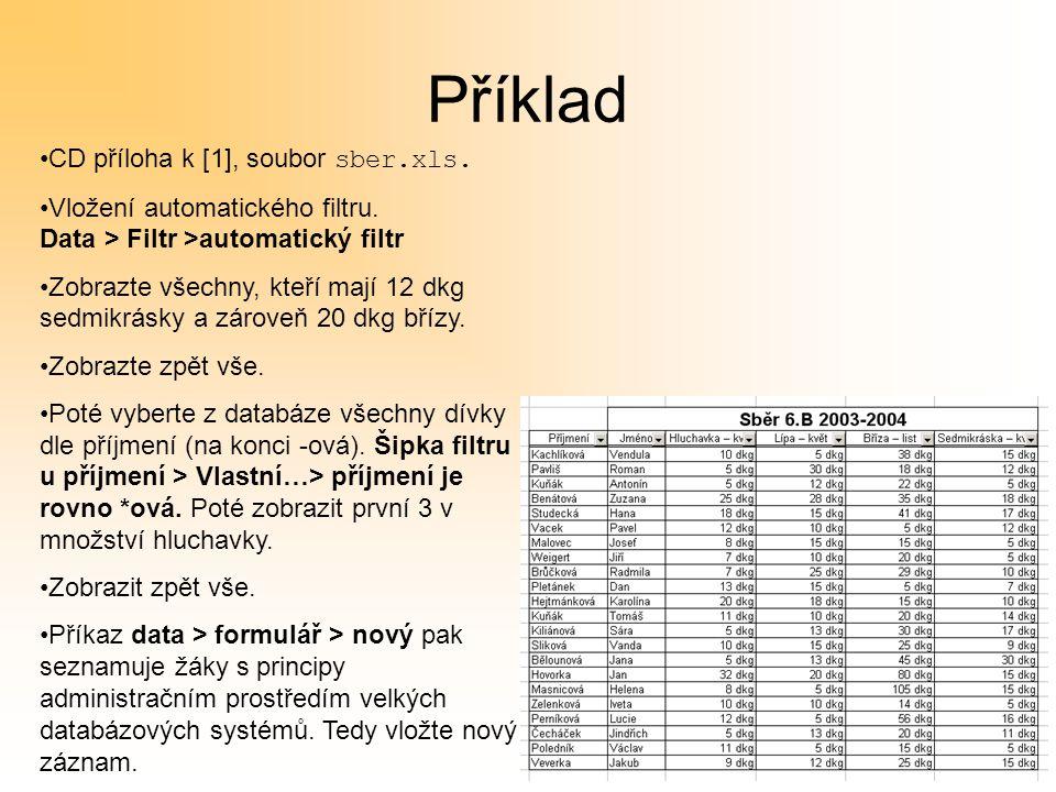 Příklad CD příloha k [1], soubor sber.xls. Vložení automatického filtru.