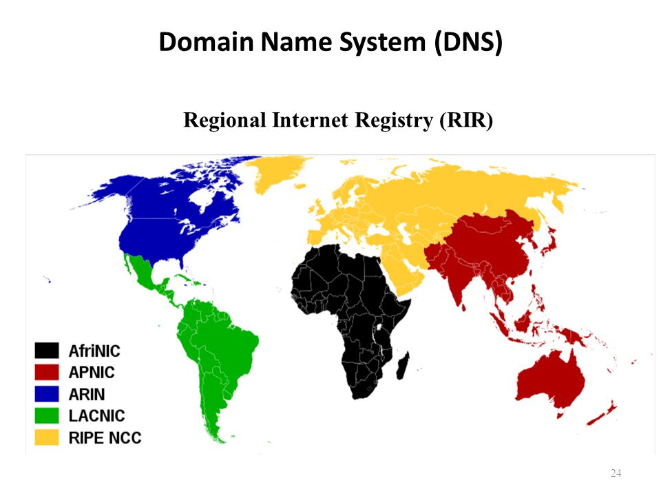24 Domain Name System (DNS) Regional Internet Registry (RIR)