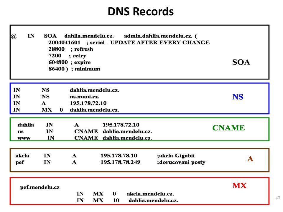 43 DNS Records