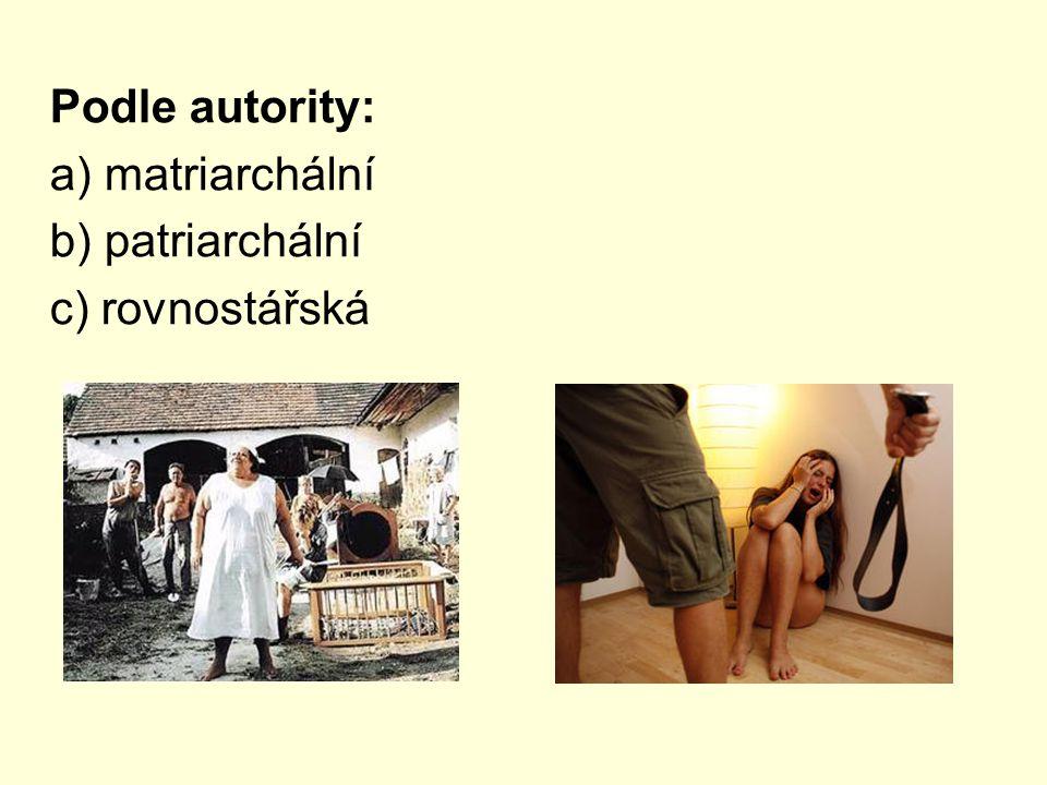 Podle autority: a) matriarchální b) patriarchální c) rovnostářská