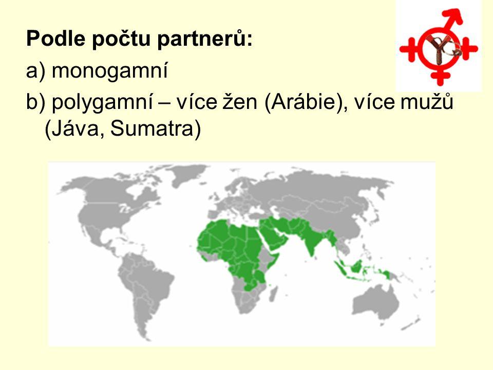Podle geografického členění: a) východní – vícegenerační (emocionální výchova) b) západní – nukleární (výchova zaměřená na profesní úspěch)