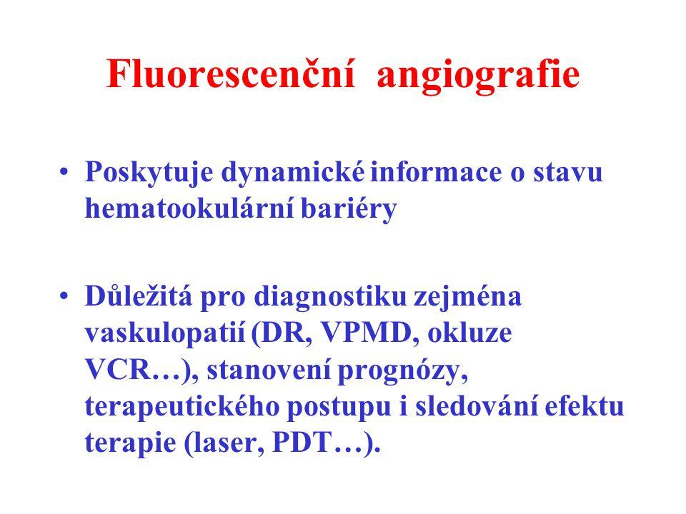 Poskytuje dynamické informace o stavu hematookulární bariéry Důležitá pro diagnostiku zejména vaskulopatií (DR, VPMD, okluze VCR…), stanovení prognózy