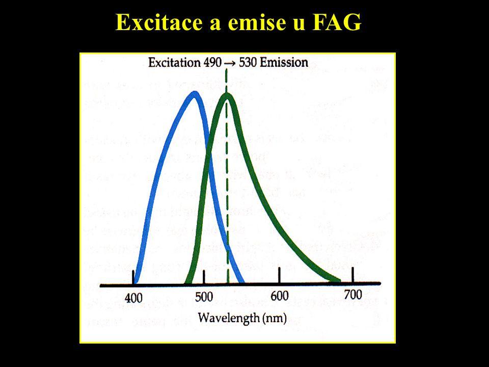Excitace a emise u FAG
