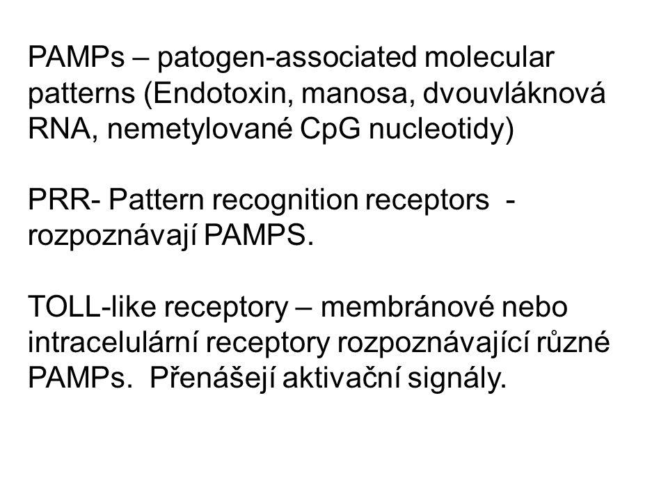 PAMPs – patogen-associated molecular patterns (Endotoxin, manosa, dvouvláknová RNA, nemetylované CpG nucleotidy) PRR- Pattern recognition receptors - rozpoznávají PAMPS.