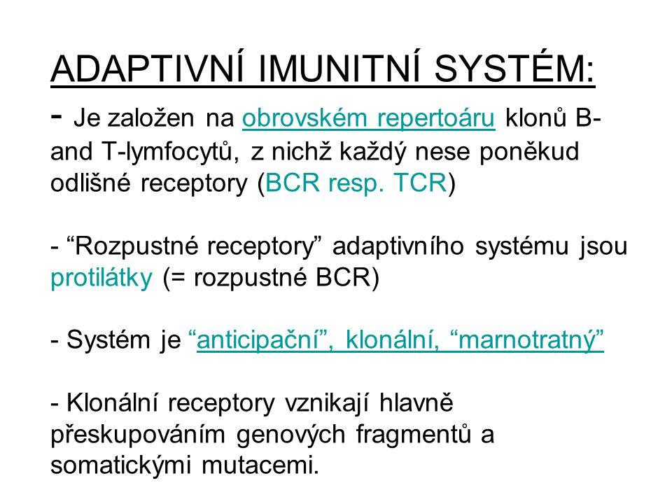 ADAPTIVNÍ IMUNITNÍ SYSTÉM: - Je založen na obrovském repertoáru klonů B- and T-lymfocytů, z nichž každý nese poněkud odlišné receptory (BCR resp. TCR)