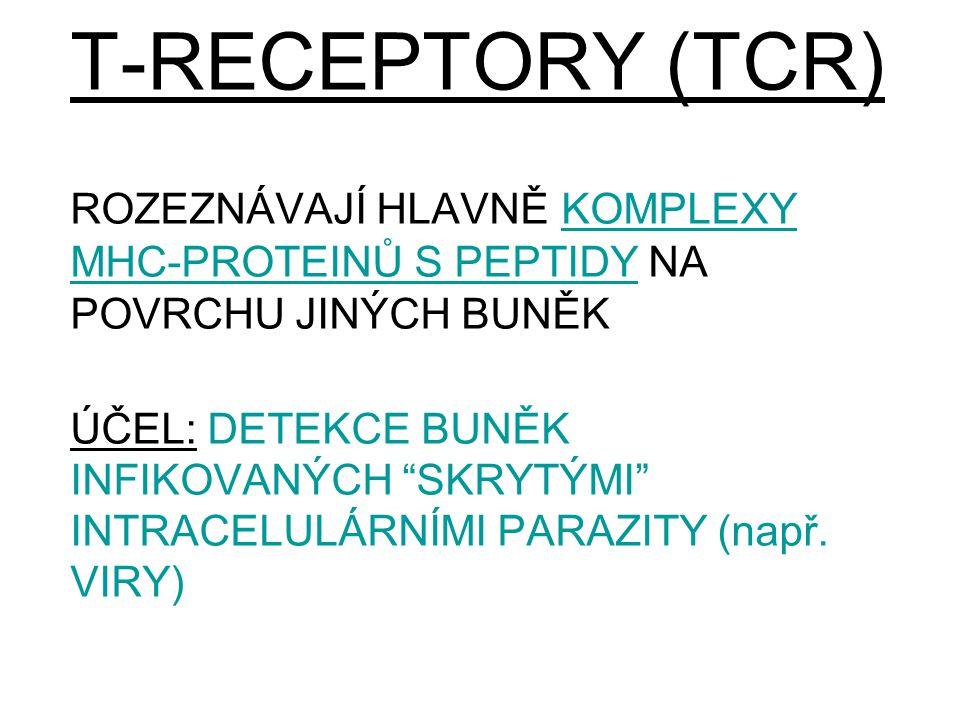 """T-RECEPTORY (TCR) ROZEZNÁVAJÍ HLAVNĚ KOMPLEXY MHC-PROTEINŮ S PEPTIDY NA POVRCHU JINÝCH BUNĚK ÚČEL: DETEKCE BUNĚK INFIKOVANÝCH """"SKRYTÝMI"""" INTRACELULÁRN"""