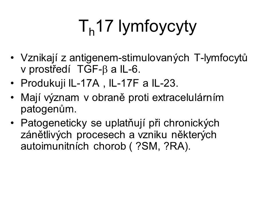 T h 17 lymfoycyty Vznikají z antigenem-stimulovaných T-lymfocytů v prostředí TGF-  a IL-6. Produkuji IL-17A, IL-17F a IL-23. Mají význam v obraně pro