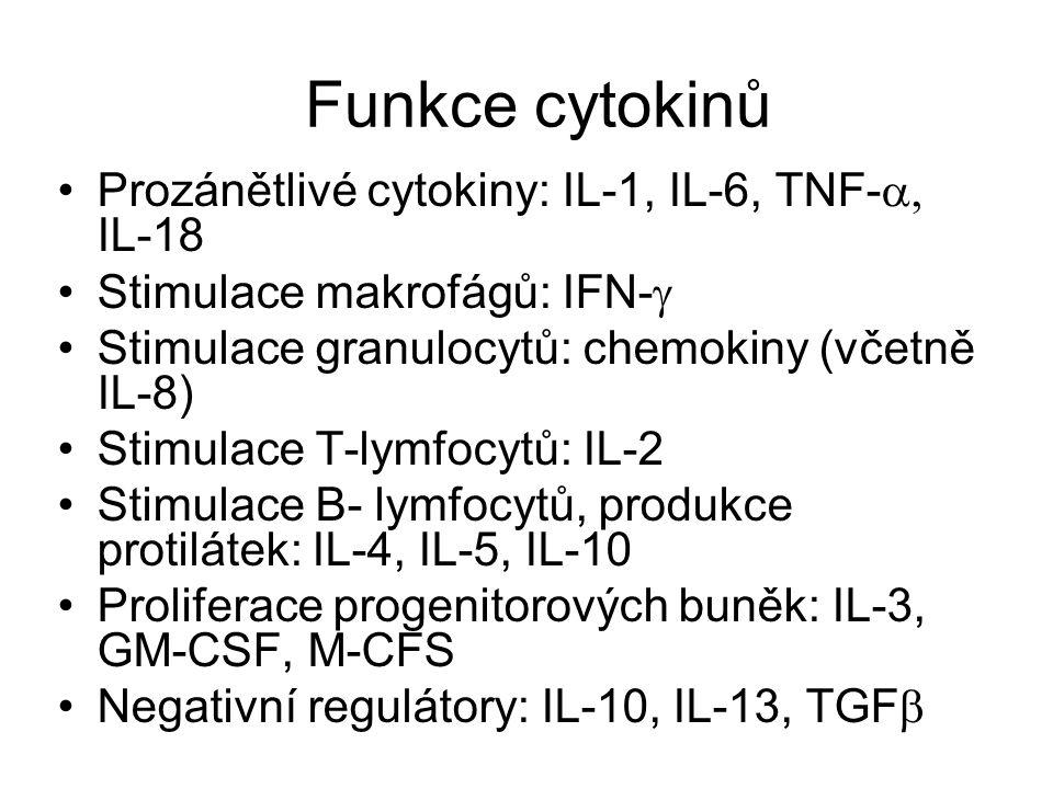Funkce cytokinů Prozánětlivé cytokiny: IL-1, IL-6, TNF-  IL-18 Stimulace makrofágů: IFN-  Stimulace granulocytů: chemokiny (včetně IL-8) Stimulace T-lymfocytů: IL-2 Stimulace B- lymfocytů, produkce protilátek: IL-4, IL-5, IL-10 Proliferace progenitorových buněk: IL-3, GM-CSF, M-CFS Negativní regulátory: IL-10, IL-13, TGF 