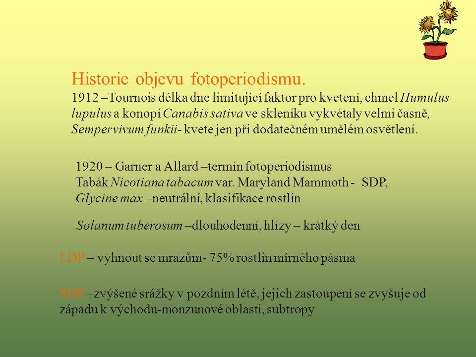 Historie objevu fotoperiodismu.