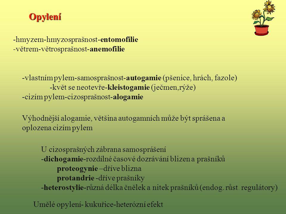 -hmyzem-hmyzosprašnost-entomofilie -větrem-větrosprašnost-anemofilie -vlastním pylem-samosprašnost-autogamie (pšenice, hrách, fazole) -květ se neotevře-kleistogamie (ječmen,rýže) -cizím pylem-cizosprašnost-alogamie Výhodnější alogamie, většina autogamních může být sprášena a oplozena cizím pylem U cizosprašných zábrana samosprášení -dichogamie-rozdílné časové dozrávání blizen a prašníků proteogynie –dříve blizna protandrie -dříve prašníky -heterostylie-různá délka čnělek a nitek prašníků (endog.