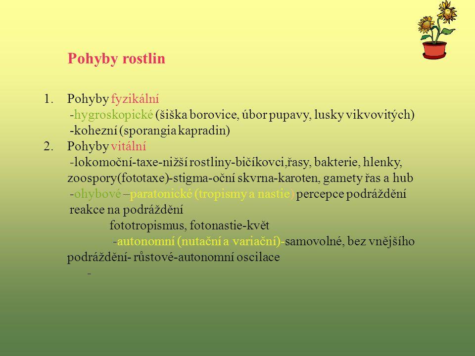 Pohyby rostlin 1.Pohyby fyzikální -hygroskopické (šiška borovice, úbor pupavy, lusky vikvovitých) -kohezní (sporangia kapradin) 2.Pohyby vitální -lokomoční-taxe-nižší rostliny-bičíkovci,řasy, bakterie, hlenky, zoospory(fototaxe)-stigma-oční skvrna-karoten, gamety řas a hub -ohybové –paratonické (tropismy a nastie) percepce podráždění reakce na podráždění fototropismus, fotonastie-květ -autonomní (nutační a variační)-samovolné, bez vnějšího podráždění- růstové-autonomní oscilace -