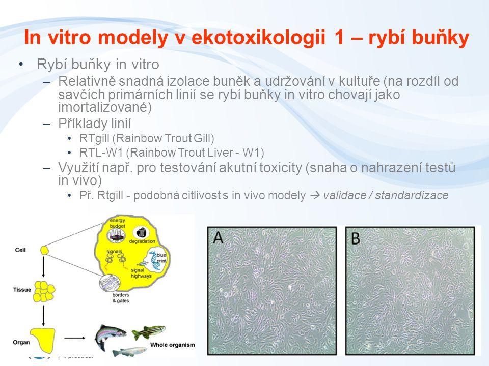 In vitro modely v ekotoxikologii 1 – rybí buňky Rybí buňky in vitro –Relativně snadná izolace buněk a udržování v kultuře (na rozdíl od savčích primárních linií se rybí buňky in vitro chovají jako imortalizované) –Příklady linií RTgill (Rainbow Trout Gill) RTL-W1 (Rainbow Trout Liver - W1) –Využití např.