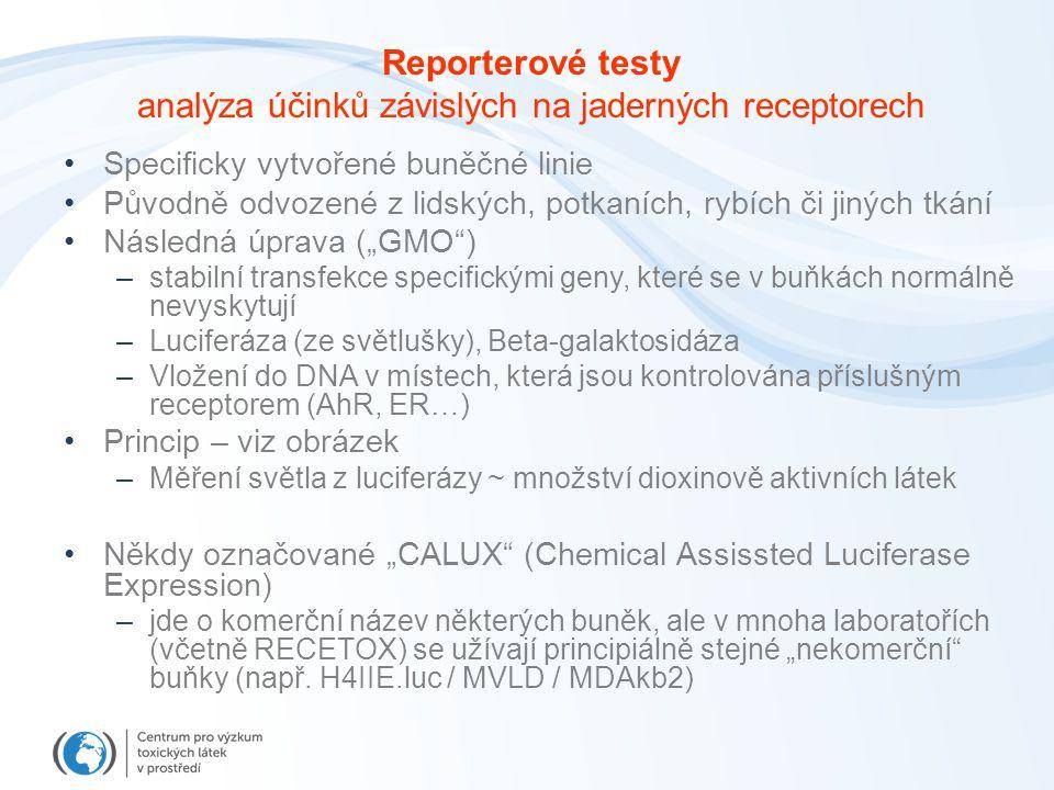 """Reporterové testy analýza účinků závislých na jaderných receptorech Specificky vytvořené buněčné linie Původně odvozené z lidských, potkaních, rybích či jiných tkání Následná úprava (""""GMO ) –stabilní transfekce specifickými geny, které se v buňkách normálně nevyskytují –Luciferáza (ze světlušky), Beta-galaktosidáza –Vložení do DNA v místech, která jsou kontrolována příslušným receptorem (AhR, ER…) Princip – viz obrázek –Měření světla z luciferázy ~ množství dioxinově aktivních látek Někdy označované """"CALUX (Chemical Assissted Luciferase Expression) –jde o komerční název některých buněk, ale v mnoha laboratořích (včetně RECETOX) se užívají principiálně stejné """"nekomerční buňky (např."""