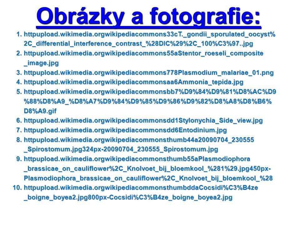 Obrázky a fotografie: 1. httpupload.wikimedia.orgwikipediacommons33cT._gondii_sporulated_oocyst% 1.