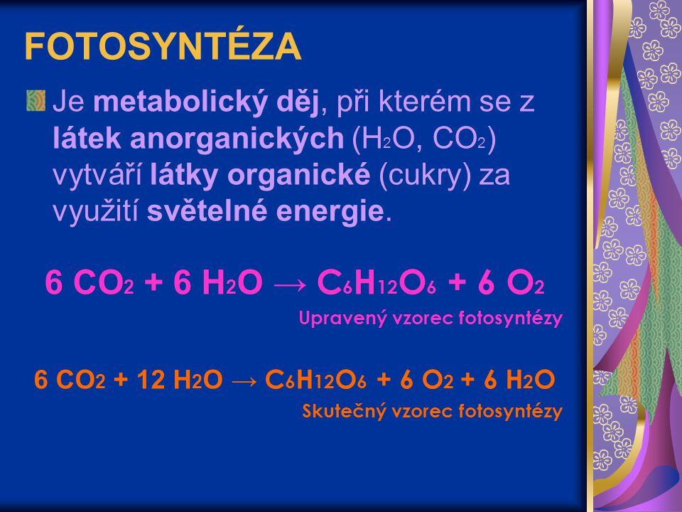 FOTOSYNTÉZA Je metabolický děj, při kterém se z látek anorganických (H 2 O, CO 2 ) vytváří látky organické (cukry) za využití světelné energie. 6 CO 2