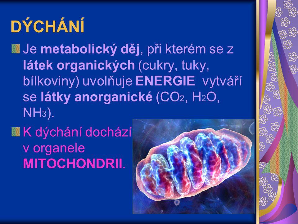 DÝCHÁNÍ Je metabolický děj, při kterém se z látek organických (cukry, tuky, bílkoviny) uvolňuje ENERGIE vytváří se látky anorganické (CO 2, H 2 O, NH