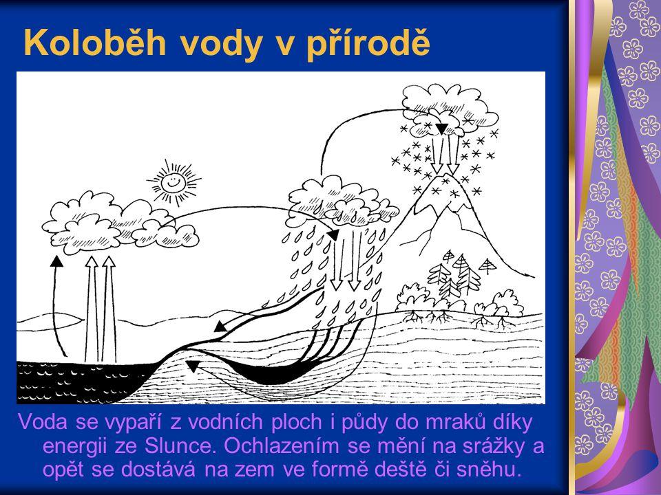 Koloběh vody v přírodě Voda se vypaří z vodních ploch i půdy do mraků díky energii ze Slunce. Ochlazením se mění na srážky a opět se dostává na zem ve