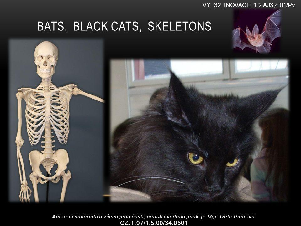 BATS, BLACK CATS, SKELETONS VY_32_INOVACE_1.2.AJ3,4.01/Pv Autorem materiálu a všech jeho částí, není-li uvedeno jinak, je Mgr.