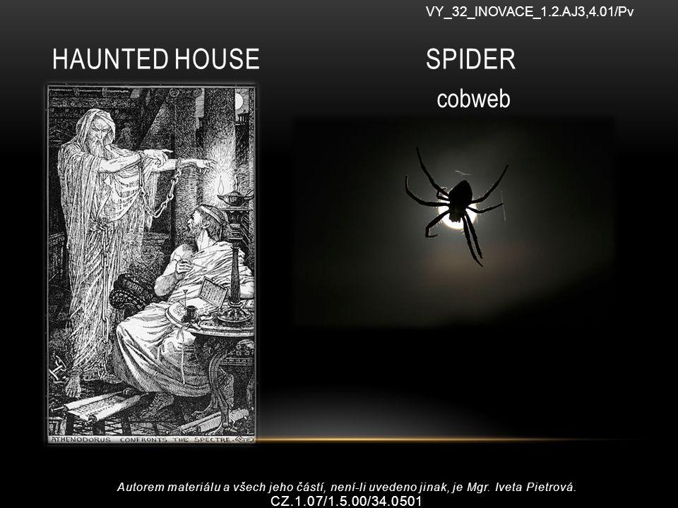 HAUNTED HOUSE SPIDER VY_32_INOVACE_1.2.AJ3,4.01/Pv cobweb Autorem materiálu a všech jeho částí, není-li uvedeno jinak, je Mgr.