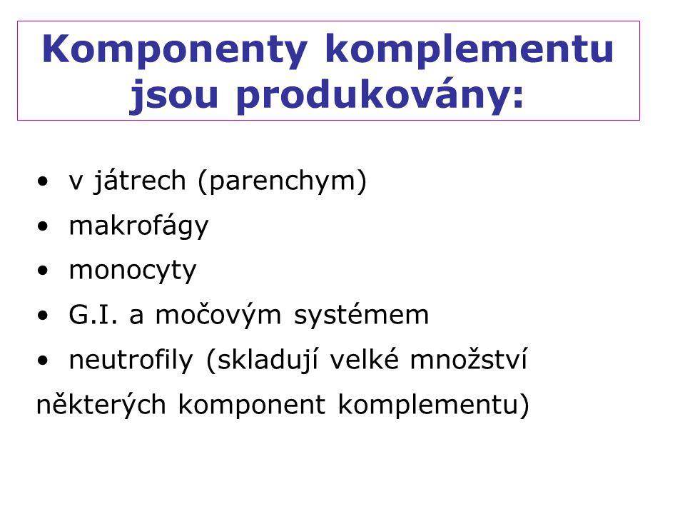Komponenty komplementu jsou produkovány: v játrech (parenchym) makrofágy monocyty G.I. a močovým systémem neutrofily (skladují velké množství některýc