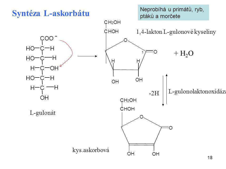 18 OH O O H H CHOH CH 2 OH 1 OH O O OH OH CHOH CH 2 OH -2H Syntéza L-askorbátu L-gulonát 1,4-lakton L-gulonové kyseliny kys.askorbová COO C C C C C H