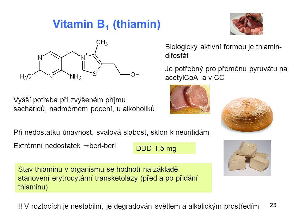 23 Vitamin B 1 (thiamin) Biologicky aktivní formou je thiamin- difosfát Je potřebný pro přeměnu pyruvátu na acetylCoA a v CC Vyšší potřeba při zvýšené