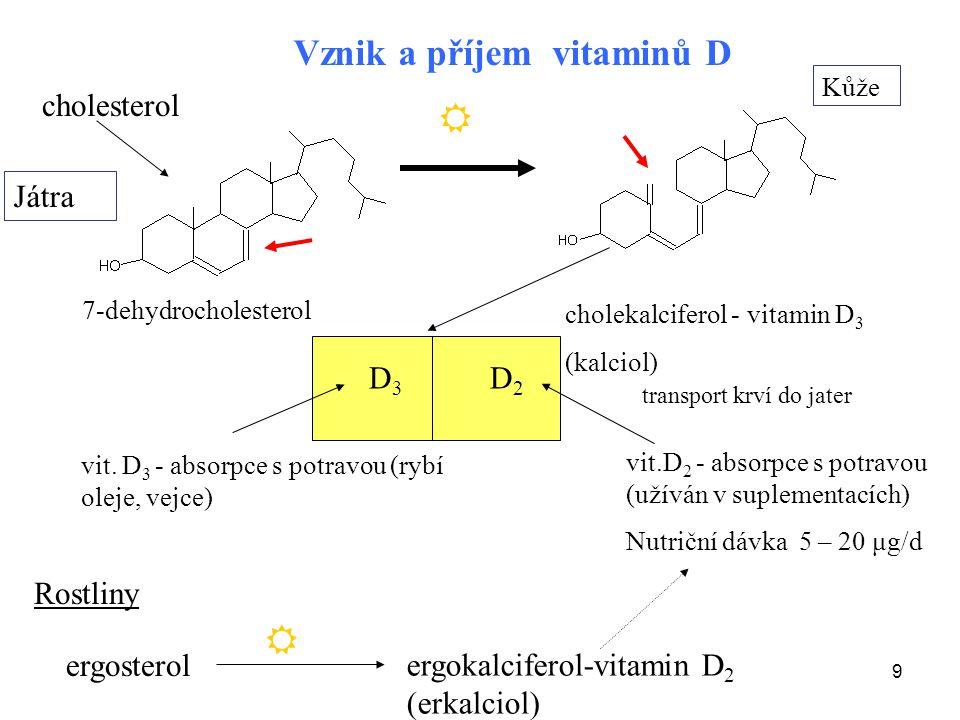 9 7-dehydrocholesterol cholekalciferol - vitamin D 3 (kalciol) Kůže cholesterol Játra vit. D 3 - absorpce s potravou (rybí oleje, vejce) Rostliny Vzni