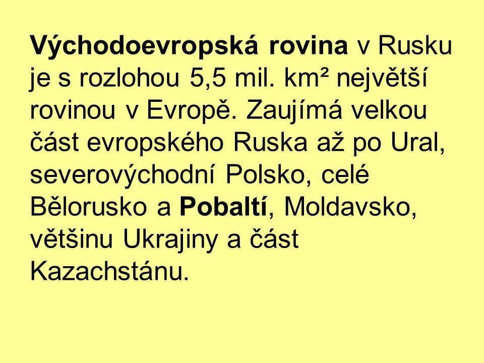 Východoevropská rovina v Rusku je s rozlohou 5,5 mil.