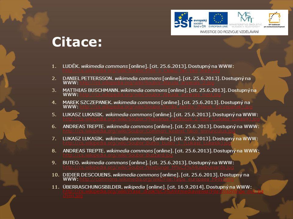 Citace: 1.LUDĚK. wikimedia commons [online]. [cit. 25.6.2013]. Dostupný na WWW: http://cs.wikipedia.org/wiki/Soubor:Pole_v_Cesku_lan_bez_mezi.jpg http